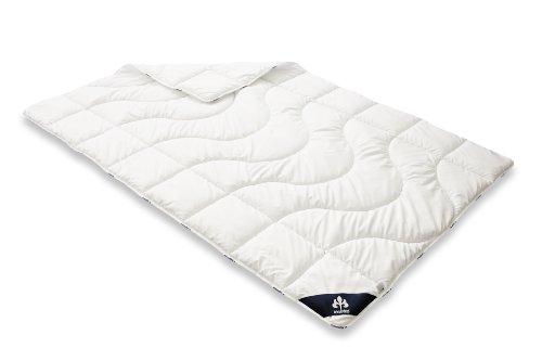 Badenia Bettcomfort Irisette Micro Thermo Steppbett, leichte Bettdecke für den Sommer, 135 x 200 cm, weiß