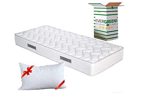 EVERGREENWEB Orthopädische Waterfoam Matratze 120x190, Hoch 20 cm + Memory Foam Kissen KOSTENLOS aus Memory Foam Flocken, Atmungsaktiv, Hypoallergen, Ergonomisch, 100% Made in Italy | Fashion