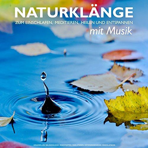 Naturklänge mit Musik zum Einschlafen, Meditieren, Heilen und Entspannen: Ozeanwellen, Waldgeräusche, Regentropfen, Vogelstimmen, Entspannungsmusik, Einschlafmusik