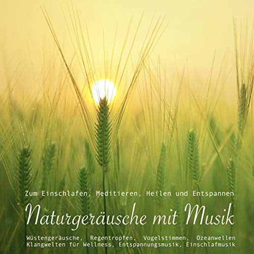 Naturgeräusche mit Musik zum Einschlafen, Meditieren, Heilen und Entspannen: Wstengeräusche, Regentropfen, Vogelstimmen, Ozeanwellen